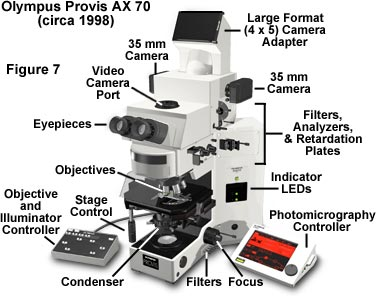 microsystemy_ru_articles_Anatomy_of_the_Microscope_Introduction