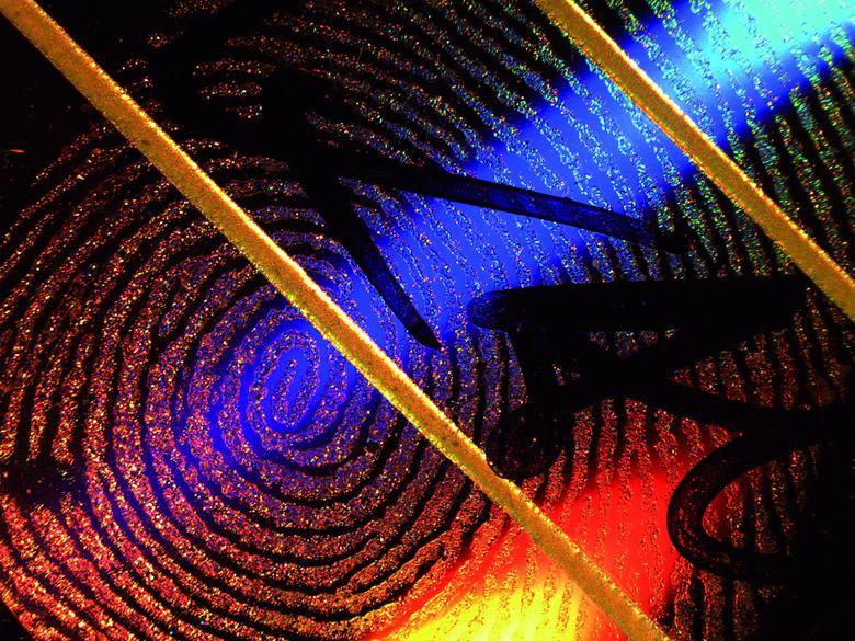 Установление личности человека по отпечаткам пальцев – Интерактивная микроскопическая система облегчает процесс обучения специалистов в области дактилоскопии.